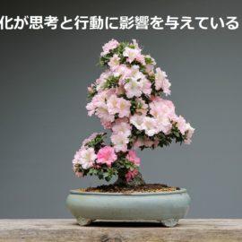 異文化圏からみた日本人とそのマネジメントを考える